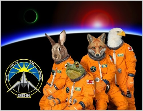 http://www.game-saga.com/wp-content/uploads/2012/09/star-fox-space-crew.jpg
